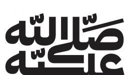 آی بی ام پلکس عربی ضخیم